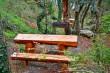 Мангал + стол в парке